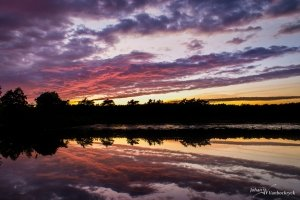 Reflections of the colourfull sunset sky in a pond of nature reserve De Teut in Zonhoven, Belgium