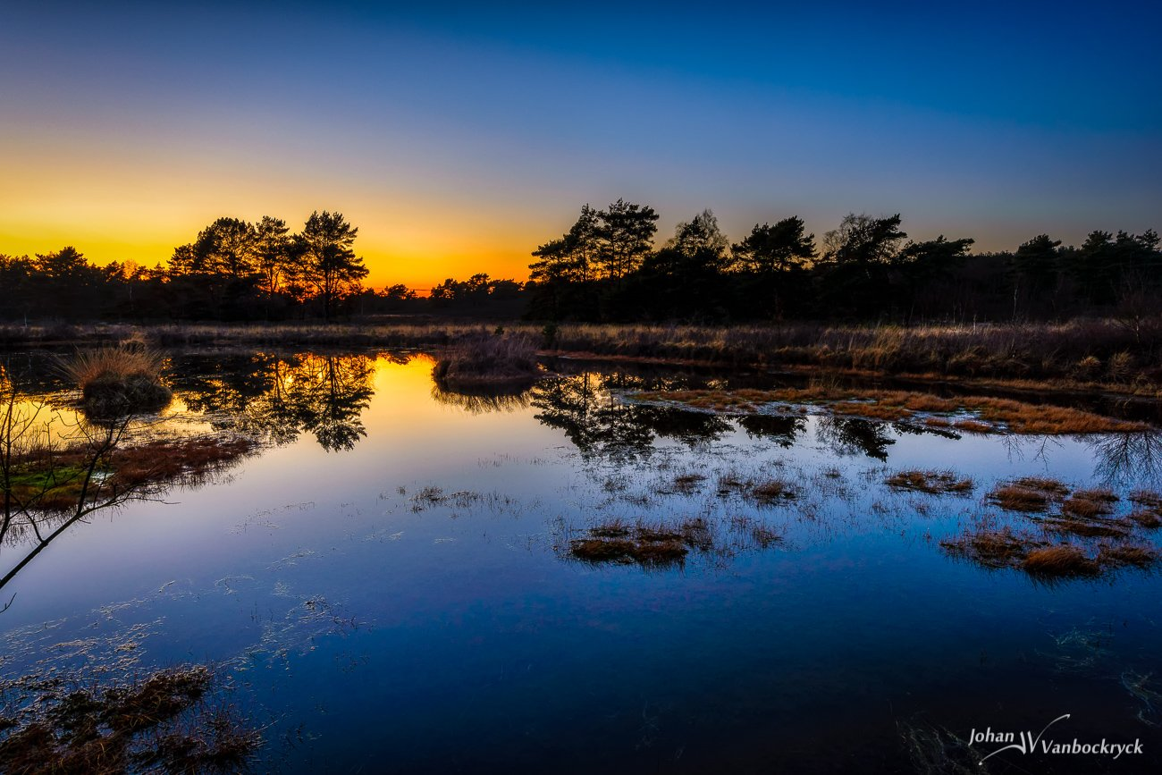 A pond in nature reserve De Teut in Zonhoven, Belgium with the last light of the day turning the sky partly orange