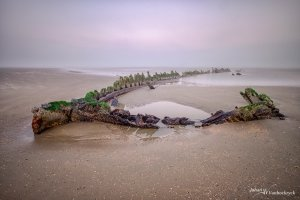 The last wooden remains of an old shipwreck on the beach during a foggy morning in Bray-Dunes, France