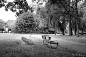 A bench and a lost umbrella in the city park of Hasselt, Belgium