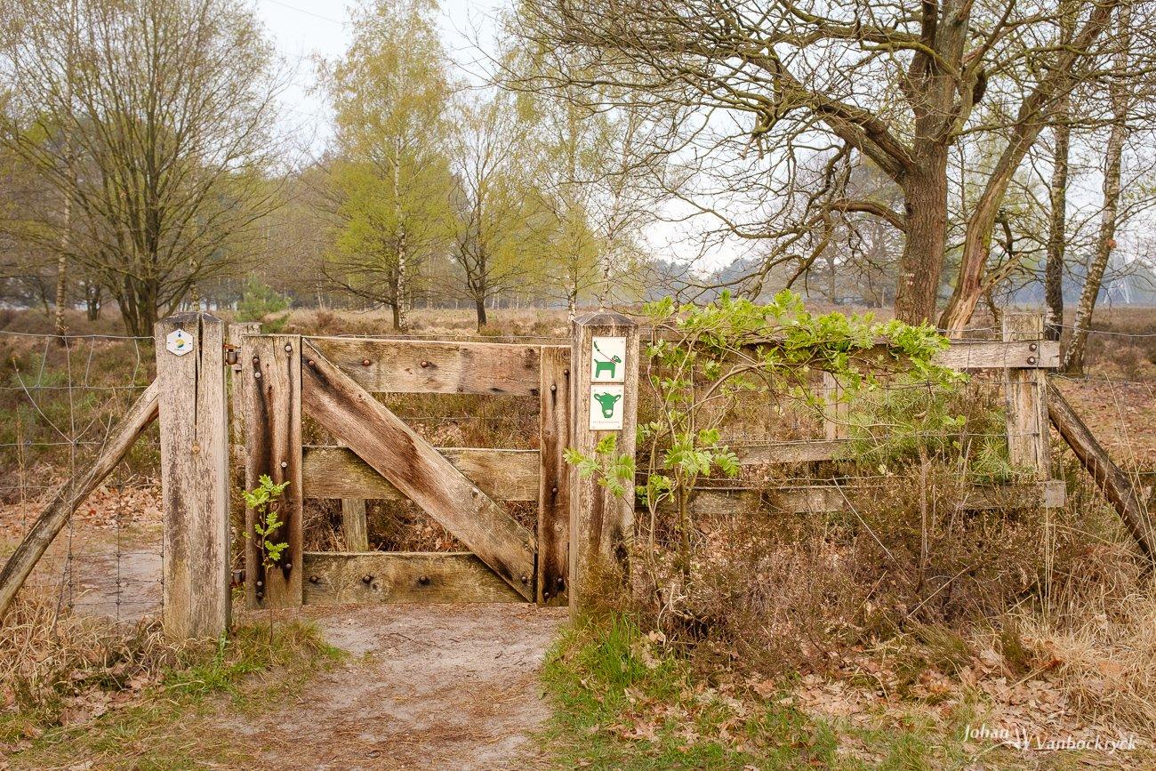 A wooden gate in nature reserve Tenhaagdoornheide in Houthalen-Helchteren, Belgium