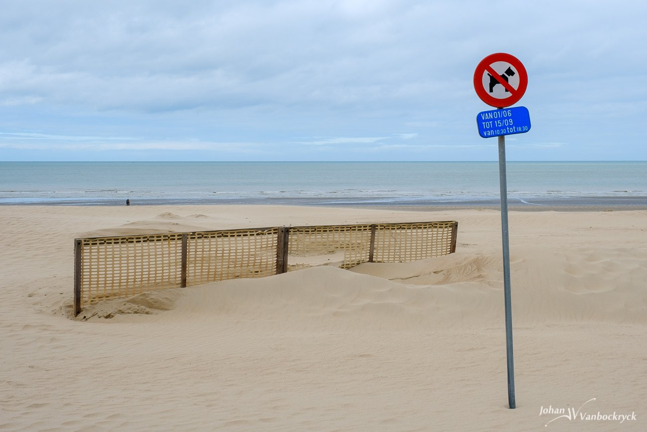 A fence and No Dogs Allowed sign on the beach of Koksijde, Belgium