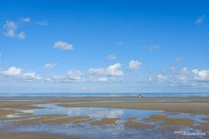 Two horses in the distance on the beach of Koksijde, Belgium under a blue sky with some clouds